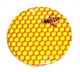 Výsledek obrázku pro medový plást